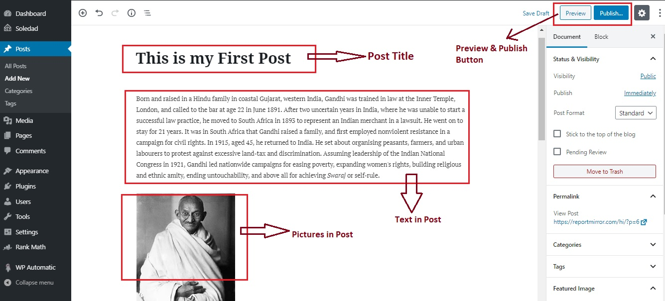 Wordpress Writing Post Step 5